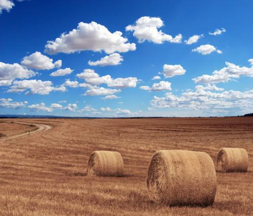 Klima-Bauern-Beispielgalerie-9